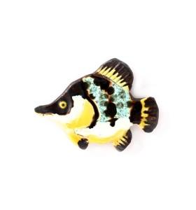Hal, sávozott, kékes-fehér-fekete-sárga, fehér, hűtőmágnes